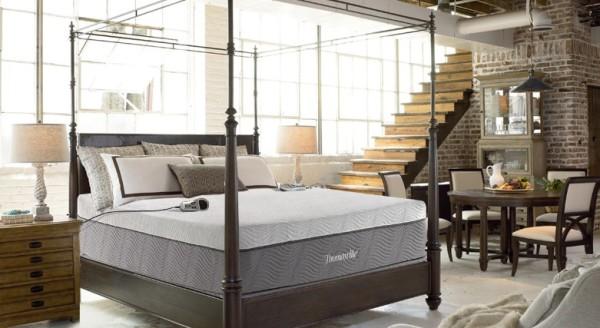 thomasville jupiter 2-chamber air bed