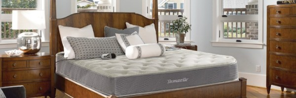 thomasville mercury 2 chamber air bed