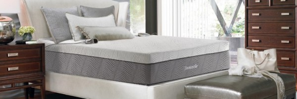 thomasville neptune 2 chamber air bed
