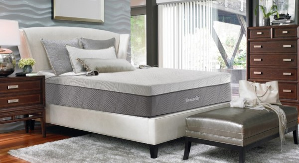 thomasville neptune 2 chamber air bed