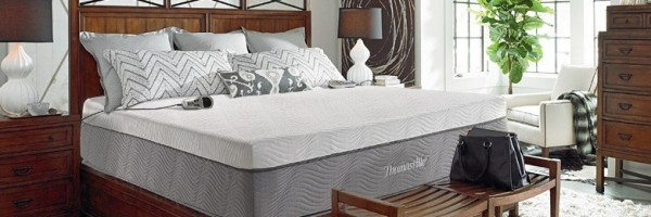 thomasville saturn 2 chamber air bed