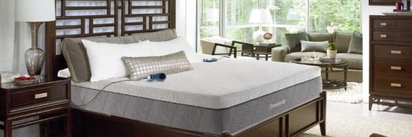 thomasville aries 6 chamber air bed