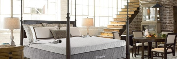 thomasville jupiter 2-chamber air bed